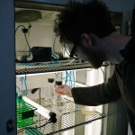 Stephan proudly demonstrated the volvox incubator he built. Our supply of algae is secured!